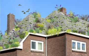 Çatıları yemyeşil yapan saksılı kiremitler