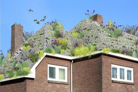 çatı saksıları-3