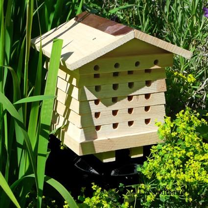 arı villası