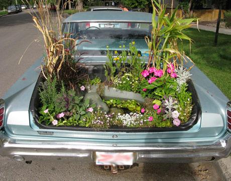 klasik otomobil bahçesi