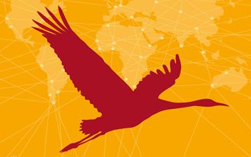 dünya göçmen kuşlar günü