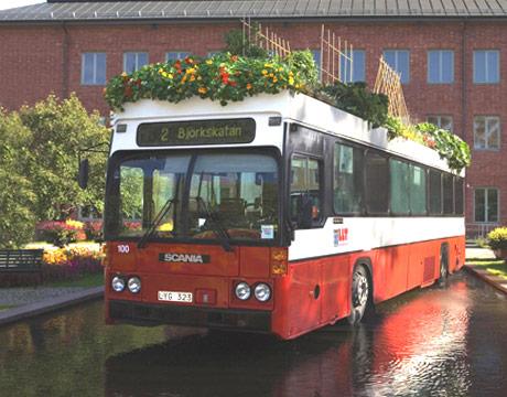 otobüs bahçesi