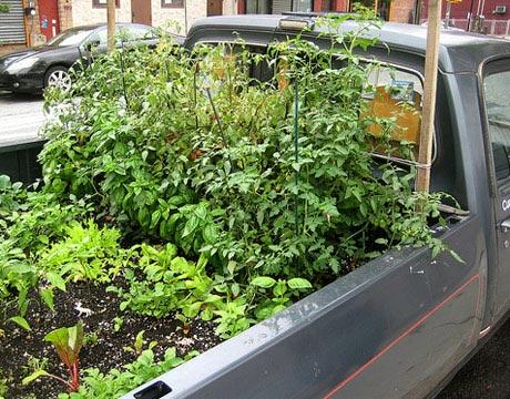 kamyonet bahçe